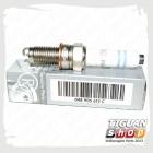 Свеча зажигания Тигуан 04E905612C